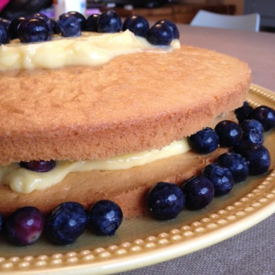 berry and curd cake